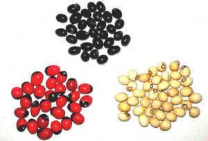 Natural Red, White Black Gunja/chirmi/chirmu 21 PCs Each