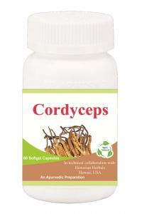 Hawaiian Herbal Cordyceps Softgel Capsule 60 Softgels