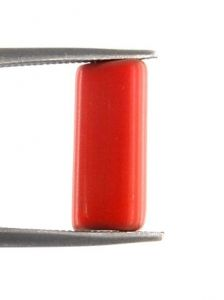 Cylindrical Shape 3.55 Ct Italian Red Coral