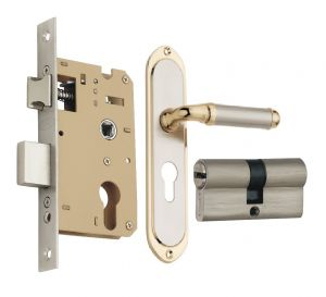 Spider Solid Brass Mortice Cylindrical Lock Set With Silver Gold Finish (code -fb31sg Sclcs )