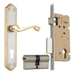 Spider Solid Brass Mortice Cylindrical Lock Set With Silver Gold Finish (fb33jg Wclcs)