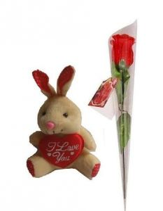 Indigo Creatives Love Gift Teddy Bear With Love Red Rose