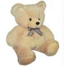 24 Inch Daddy-cool Teddy Soft Stuffed Teddy Toy