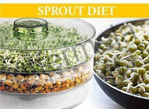 Kitchen Appliances - Sprout Maker Medium