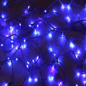 Decorative Lights 100 LED Decor Light