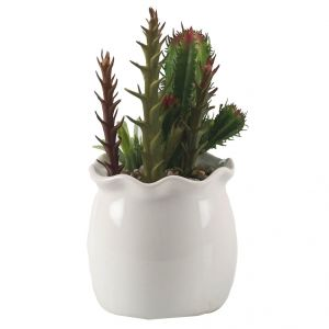Green Cactus Look Artificial Plant With Glossy Finish Pot