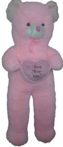 Pink 5 Feet Teddy Bear Heart Just For U