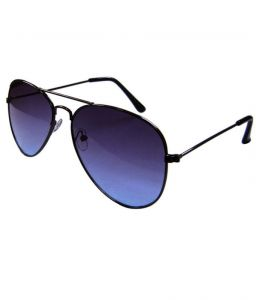 Lister Dark Blue Casual Aviator Sunglasses