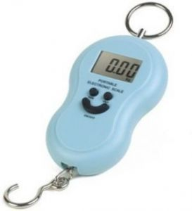 40kg Portable And Digital Weighing Scale