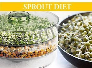Sprout Maker Medium