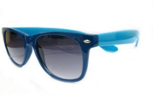 Blue Wayfarer Sunglasses-102