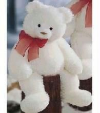 Cuddly Teddy Bear - 45 Inches