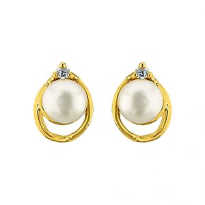 Sri Jagdamba Pearls Glity Pearl Earrings Code Jpjun-16-218