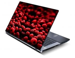 Buy Nature Laptop Notebook Skins High Quality Vinyl Skin - Lp0465 online