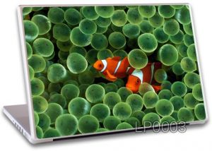 Buy Laptop Notebook Skin High Quality - Lp0003 online