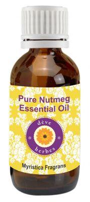 Buy Pure Nutmeg Essential Oil - Myristica Fragrans online