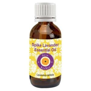 Buy Pure Spike Lavender Essential Oil 30ml (lavandula Latifolia) online