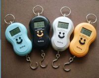 Buy Pocket Weighing Scale, Fishing Travel Scale, Balance Scale & Assured Produc online