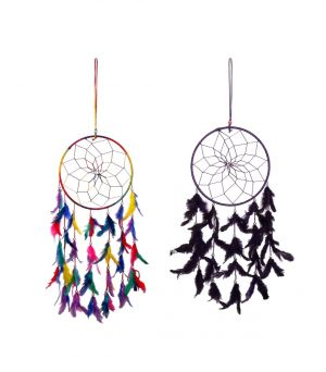 Buy Fashblush Purple And Green Mystical Feathers Dream Catchers Set Of 2 Wool Windchime online