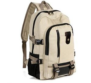 Buy Aeoss School Bag Designer Canvas Bag Unisex online