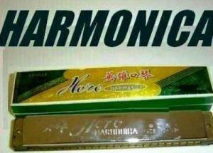 e311f4734c5 Buy Harmonica Mouth Organ 48 Holes Online