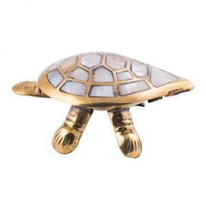 Buy Ship Turtle By Pandit Nm Shrimali online