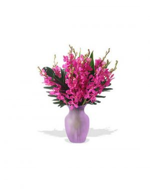 Buy Gifts Valley 12 Orchids In A Glass Vase Gift Items online