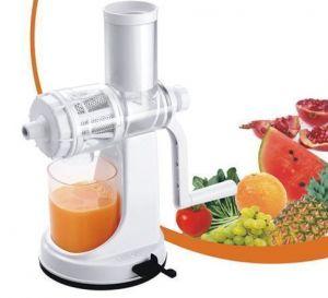 Buy Ganesh Fruit & Vegetable Juicer   Fruit Juicer   With Still Handle online