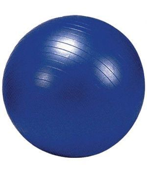 Buy 75 Cms Gym Ball With Foot Pump online