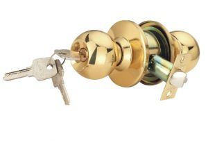 Buy Spider Cylindrical Entrance Latch Heavy Pack Of 1 online