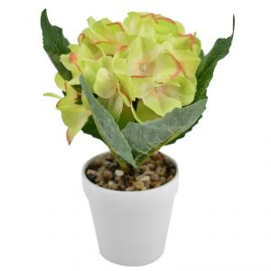 Buy Artificial Potted Plants For Home Dcor - Green Flowers online
