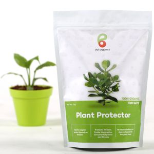Buy Pai Organics Plant Protector online