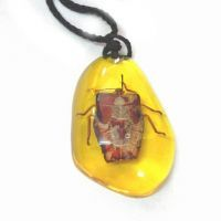 Buy Insect In Amber Pendant - Lucky Charm online