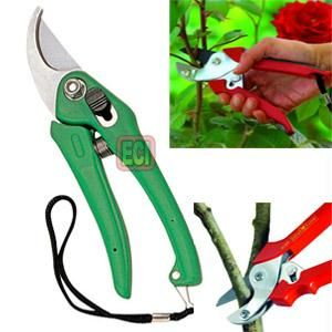 Buy Garden Shears Pruners Scissor Gardening Cut Tools Online