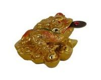 Buy Feng Shui Money Frog With Coin online