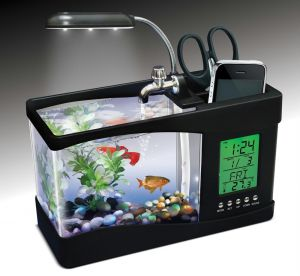 Buy Desktop Fish Tank Aquarium With 6led Clock Stand Online Best