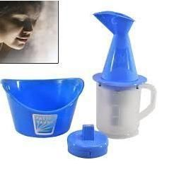 Buy Nau Nidh Steam Vapouriser Full Face Facial Sauna Nose Steamer online