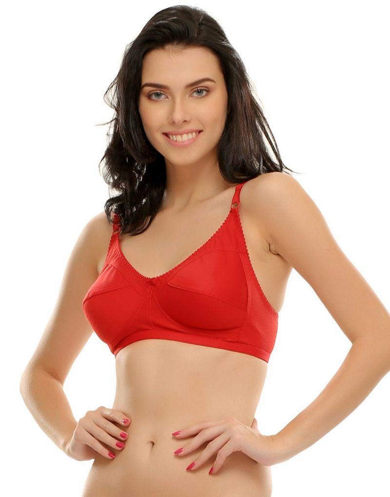Buy Clovia Cotton Rich Full Support Plus Size Bras Brf185p04 online