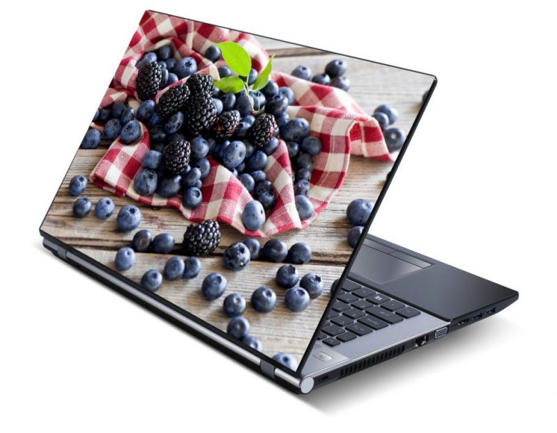 Buy Nature Laptop Notebook Skins High Quality Vinyl Skin - Lp0512 online