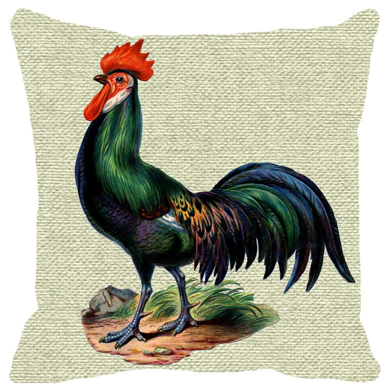 Buy Fabulloso Leaf Designs Green Rooster Cushion Cover - 16x16 Inches online