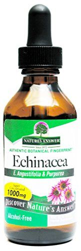 Buy Nature's Answer Echinacea Alcohol Free 2-Fluid Ounces online