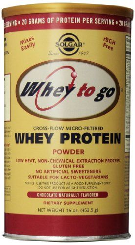Buy Solgar Whey To Go Protein Powder, Natural Chocolate Flavor, 16 Ounce online