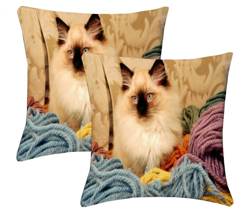 Buy Lushomes Digital Print Pussy Cushion Covers (pack Of 2) online