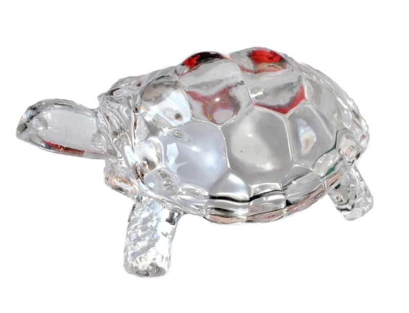 Buy Crystal Tortoise By Pandit Nm Shrimali online