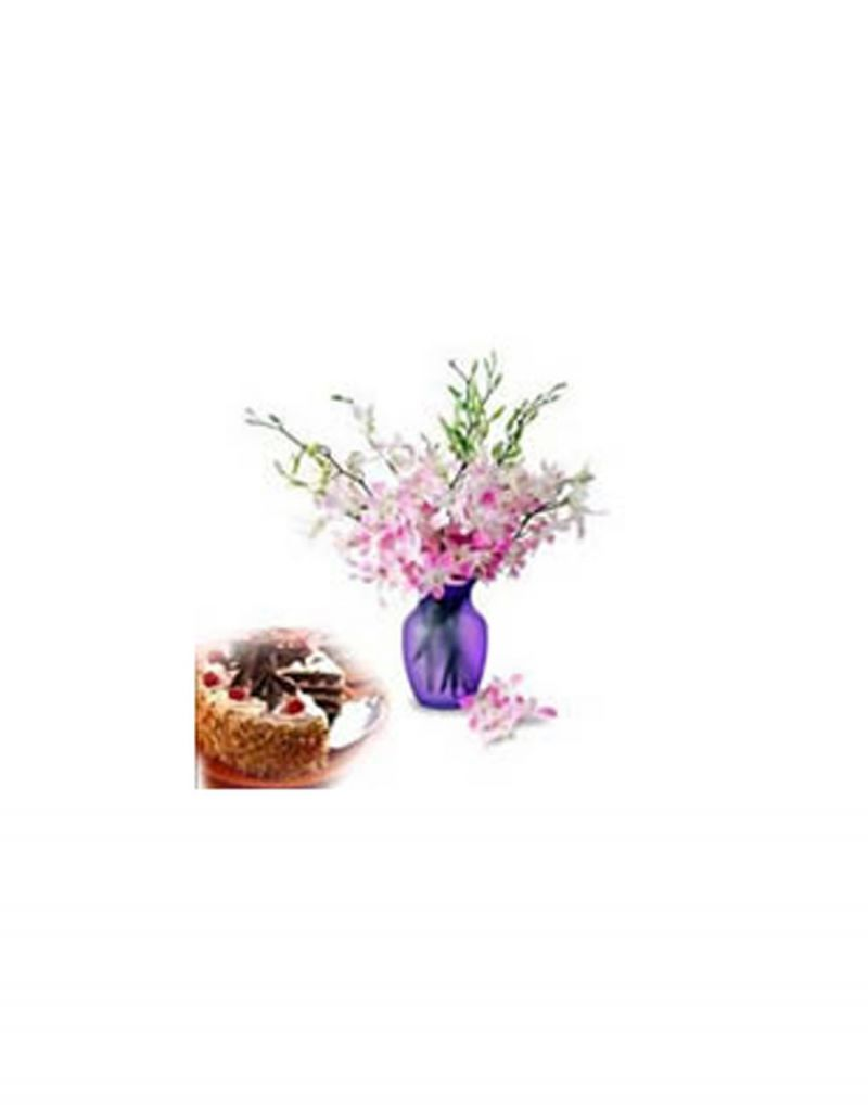 Buy Gifts Valley Black Forest Cake And Orchids In A Vase Gift Items online