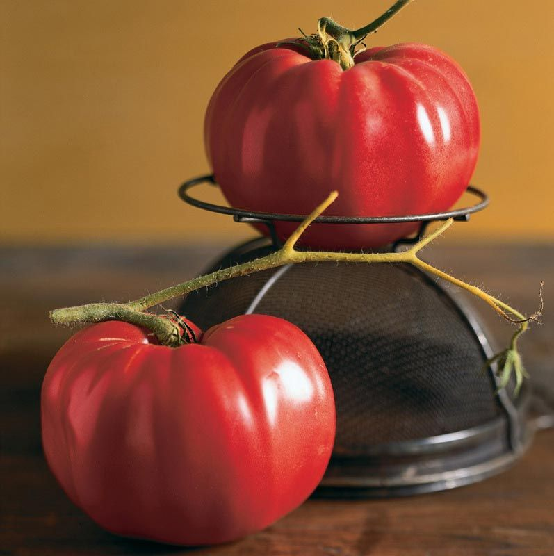Buy Tomato Mortgage Lifter Online   Best Prices in India