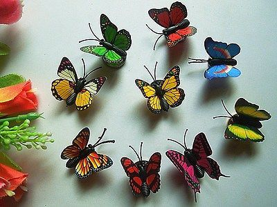 Buy Fridge Magnet 10 Small Butterfly Plastic 3-d Creative Fridge Stickers online