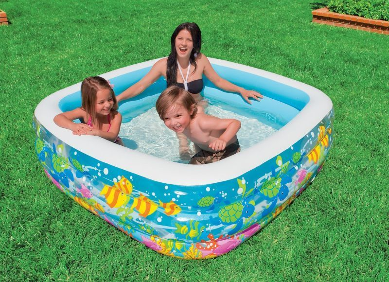 Buy Intex Aquarium Pool online