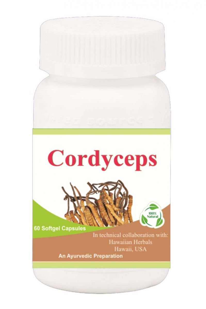 Buy Hawaiian Herbal Cordyceps Softgel Capsule 60 Softgels online