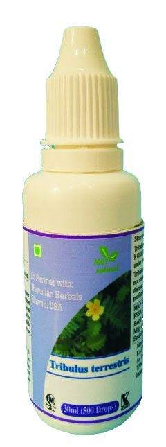 Buy Hawaiian Herbal Tribulus Terrestris Drops online